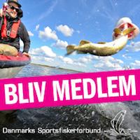 Danmarks Sportsfiskerforbund