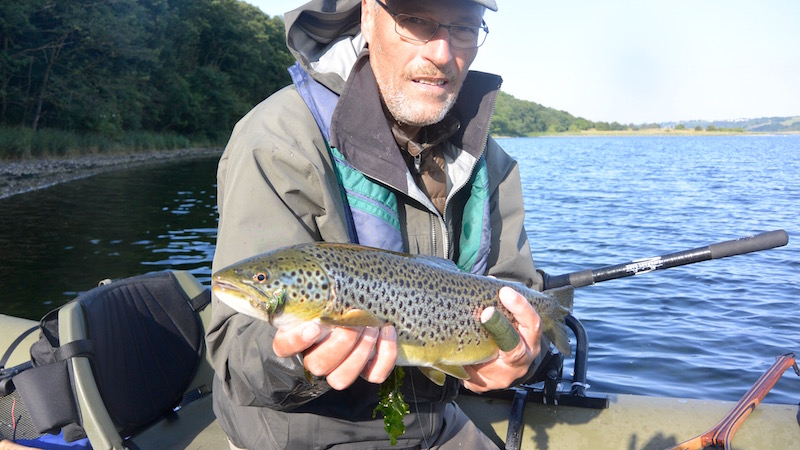150801_eagel_bay_hl_trout.jpg