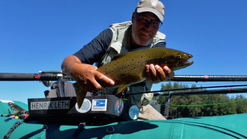 180701 holmbo trout henrik leth