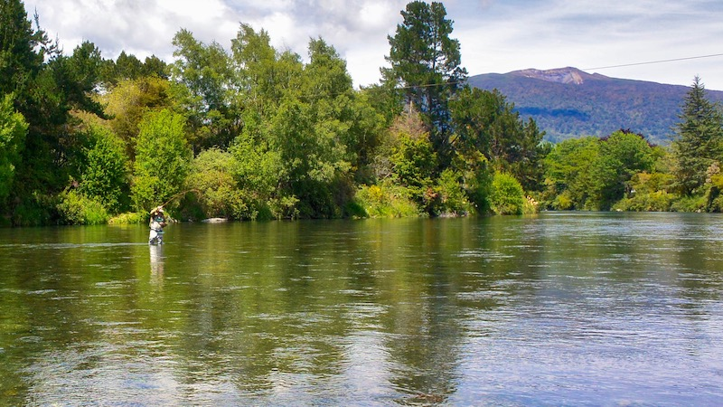 181117_tongariro_river_friesfigting.jpg